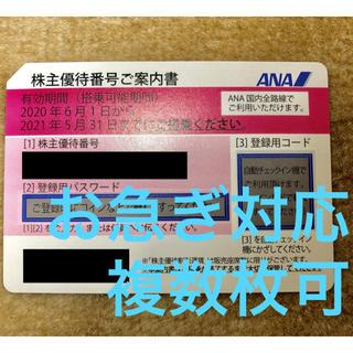 ANA(全日本空輸) - 【お急ぎ対応】ANA 全日本空輸 全日空 株主優待券 1枚