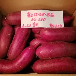 えいたん様専用 サツマイモ追加運賃分です。(野菜)