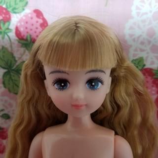 F パレットちゃん 人形