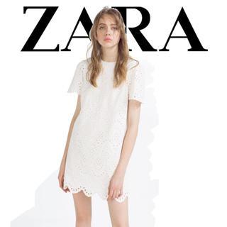 ZARA - ZARA カットワーク 刺繍 スカラップ コットン ワンピース L