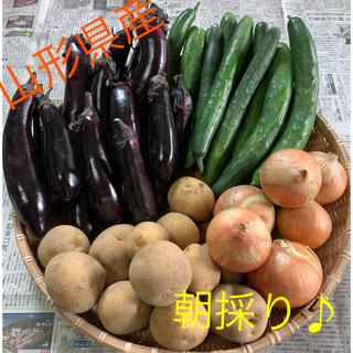 【新鮮✨】山形県産    無農薬野菜 詰め合わせ(野菜)