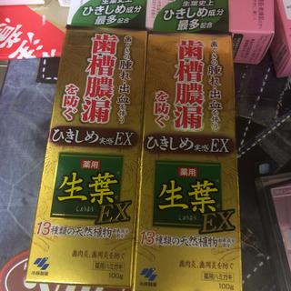 コバヤシセイヤク(小林製薬)の生葉EX(しょうようEX) 歯槽膿漏を防ぐ 薬用ハミガキ ハーブミント味 ×2個(歯磨き粉)