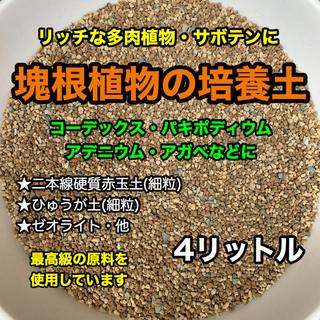 塊根植物の土 多肉植物の土 サボテンの土 多肉植物用土(その他)