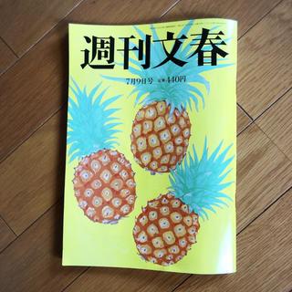 週刊文春 7月9日号 最新刊(ニュース/総合)