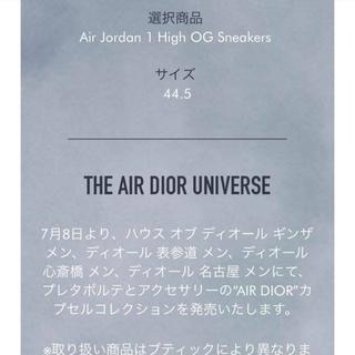 Dior - Nike Air Dior High