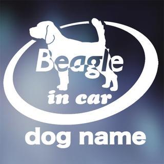 ビーグル in carステッカー、犬ステッカー(犬)