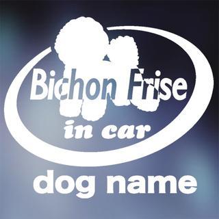 ビション・フリーゼ in carステッカー、犬ステッカー(犬)