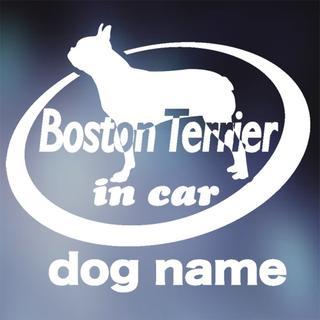 ボストンテリア in carステッカー、犬ステッカー(犬)