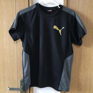 PUMA - PUMA プーマ Tシャツ ブラック 160