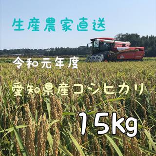 愛知県産コシヒカリ 15㎏(白米13.5㎏)(米/穀物)