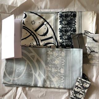 Christian Dior - 正規品!銀座店にて購入!ジョーダンコラボ