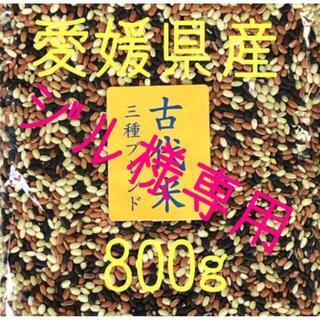 ジル様専用  古代米 3 種ブレンド 愛媛県産 800g(米/穀物)