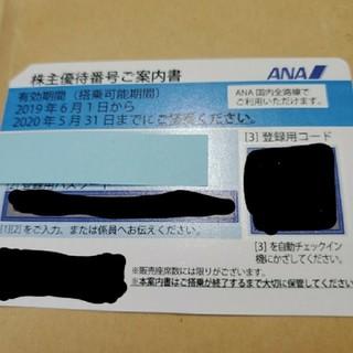 エーエヌエー(ゼンニッポンクウユ)(ANA(全日本空輸))のANA株主優待券 1枚 有効期限 11月30日(その他)