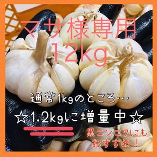 マサ様専用 12kg にんにく(野菜)