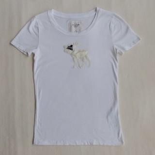 アバクロンビーアンドフィッチ(Abercrombie&Fitch)のM サイズ Abercrombie&Fitch Tシャツ (Tシャツ(半袖/袖なし))