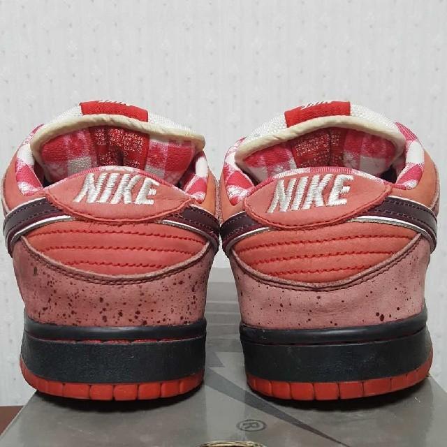 NIKE(ナイキ)の28.5cm NIKE DUNK SB RED LOBSTER ロブスター メンズの靴/シューズ(スニーカー)の商品写真