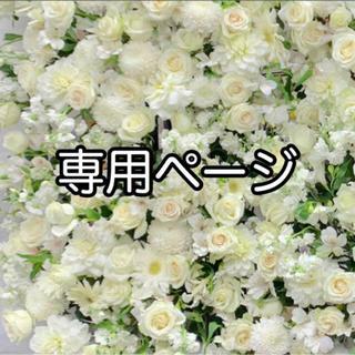 専用ページ(7/13)(その他)