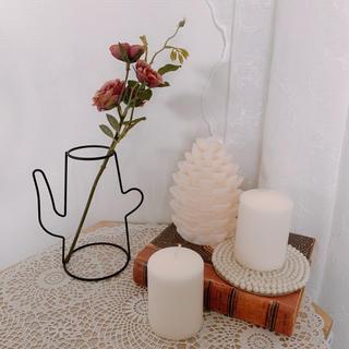 フランフラン(Francfranc)の新品未使用 フラワーベース ワイヤーインテリア ワイヤー花瓶 韓国インテリア (花瓶)