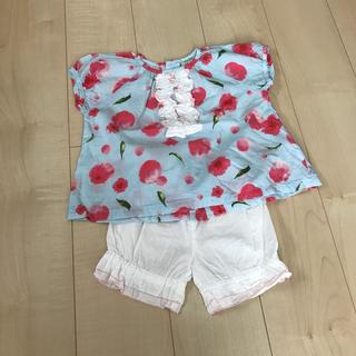 ハッカベビー(hakka baby)のhakka baby 90 セットアップ(Tシャツ/カットソー)