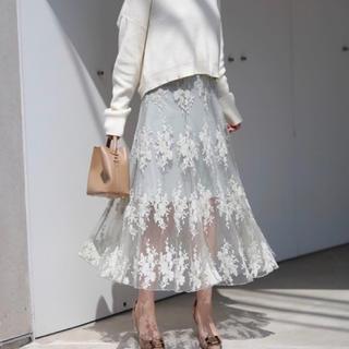 ザラ(ZARA)のLeja刺繍チュールスカート(ひざ丈スカート)