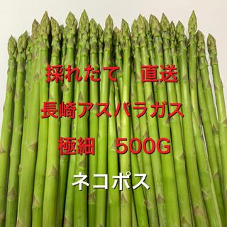 長崎産アスパラガス 極細 500G(野菜)