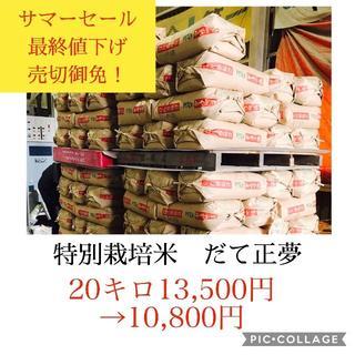 サマーセール✼最終値下げ✼宮城県産だて正夢20キロ(米/穀物)