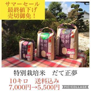 サマーセール✼最終値下げ✼宮城県産だて10キロ(米/穀物)