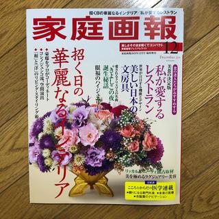 家庭画報プレミアムライト版 2019年 12月号(その他)