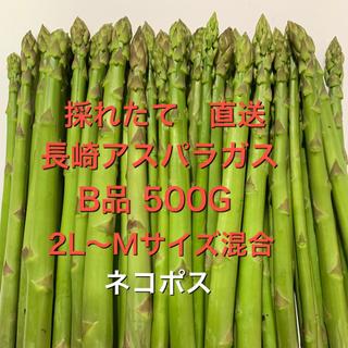 長崎産アスパラガス B品 500G(野菜)