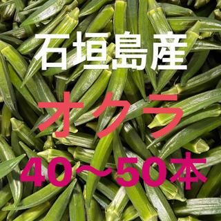 石垣島産オクラ〜送料込み(野菜)