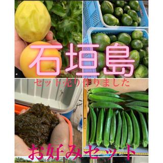 石垣島セット〜まとめ売り〜(野菜)