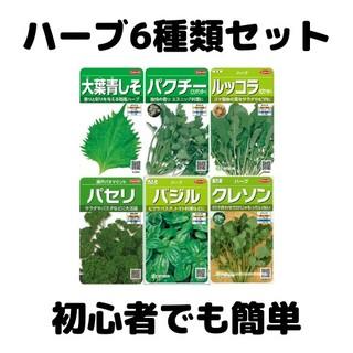 #1【ハーブ6種類+おまけ】簡単に作れる野菜の種【家庭菜園に最適】(野菜)