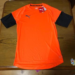 プーマ(PUMA)の新品 PUMA Tシャツ M DRY 速乾性あり(Tシャツ/カットソー(半袖/袖なし))