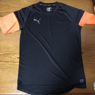 プーマ(PUMA)の美品 PUMA Tシャツ M (Tシャツ/カットソー(半袖/袖なし))