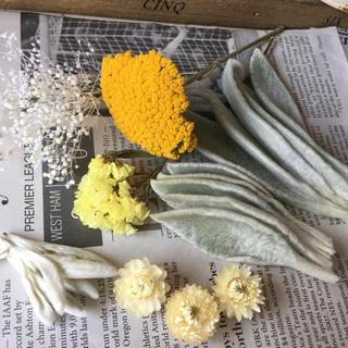 ドライフラワー 花材 ホワイト&イエロー系 スワッグ リース ガーランドなどに(ドライフラワー)