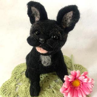 羊毛フェルト フレンチブルドッグ 犬 フレンチブル(ぬいぐるみ)