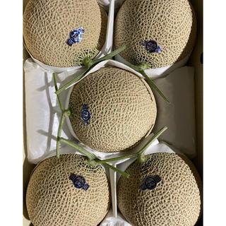 静岡 高級アールスメロン 山5玉 隔離栽培 アローマ(フルーツ)