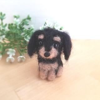 羊毛フェルト ミニチュアダックス♡子犬 ブラックタン(ぬいぐるみ)