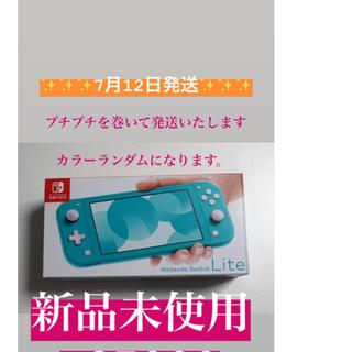 Nintendo Switch - Nintendo Switch Lite  本体 新品未使用 値下げしてます!