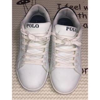 POLO RALPH LAUREN - ポロ POLO