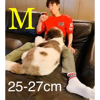 VANS - キムタク着用品 Mサイズ