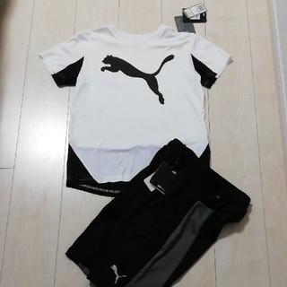 PUMA - PUMAプーマ Tシャツ・ハーフパンツ ジュニア