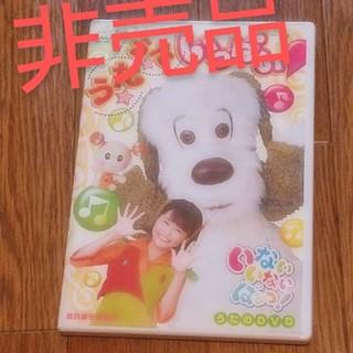 アンパンマン(アンパンマン)のいないいないばあ DVD(キッズ/ファミリー)