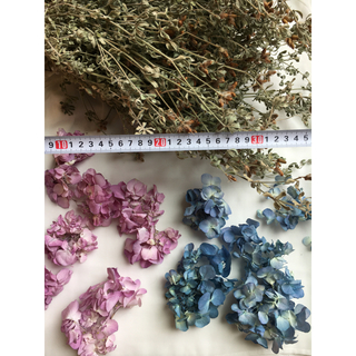 花材、シリカゲル乾燥の紫陽花と自然乾燥のロータスブリムストーン(ドライフラワー)