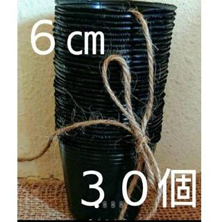 黒ポリポット6㎝ 30個➕花の種(その他)