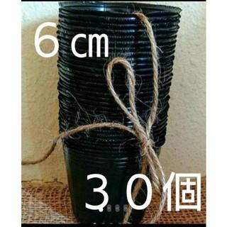 黒ポリポット6㎝30個➕花の種(その他)