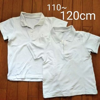 ベルメゾン(ベルメゾン)の120cm ポロシャツ2枚 白(Tシャツ/カットソー)