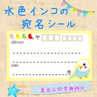 水色のインコの宛名シール50枚!差出人印字無料★(宛名シール)