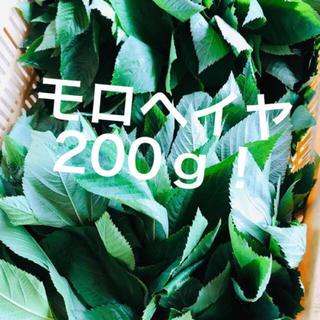 モロヘイヤ(野菜)