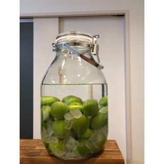 ムジルシリョウヒン(MUJI (無印良品))の果実酒用瓶(容器)